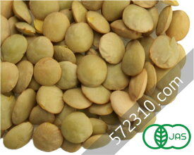 オーガニック・グリーンレンティル(緑レンズ豆) 1Kg/アメリカ産【有機レンズ豆 有機グリーンレンティル】【ナチュラルキッチン】