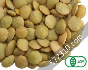 オーガニック・グリーンレンティル(緑レンズ豆) 1Kg【有機レンズ豆 有機グリーンレンティル】【ナチュラルキッチン】