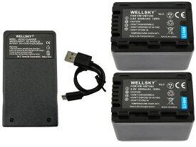 VW-VBT380 VW-VBT380-K 互換バッテリー 5000mAh 2個 & [ 超軽量 ] USB Type-C 急速 互換充電器 バッテリーチャージャー VW-BC10 VW-BC10-K 1個 [ 3点セット ] [ 純正品と同じよう使用可能 残量表示可能 ] Panasonic パナソニック HC-WX995M HC-VX992M