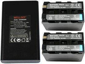 NP-F950 NP-F960 NP-F970 互換バッテリー 7400mAh 2個 & [ デュアル ] USB Type C 急速 互換充電器 バッテリーチャージャー BC-VM10 1個 [ 3点セット ] [ 純正品と同じよう使用可能 残量表示可能 ] SONY ソニー HDR-FX1 HVR-Z7J HVR-Z5J HVR-V1J HVR-HD100J