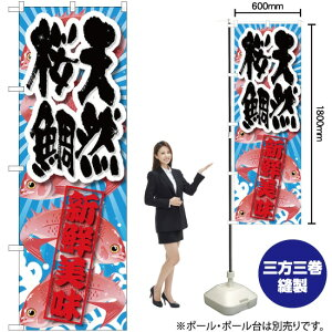 のぼり 天然桜鯛 新鮮美味 SNB-2359