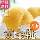 敬老の日 桃 送料無料 黄金桃 大玉(約340g×5個)約1.7kg プレゼント 岡山 産直 高級フルーツ もも ピーチ ギフト 期…