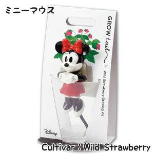 【単品】グローテール 【ミニー / ワイルドストロベリー】WD-02 ポット 植物 ディズニー ミニーマウス かわいい おしゃれ キュート 底面給水 栽培セット