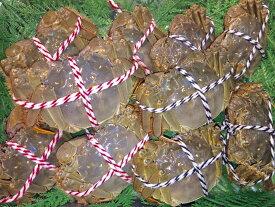 【お得なオスメス食べ比べ10匹セット(M)】上海蟹 オス 公 中5匹@170g前後 メス 母 特大5匹@130g前後 特上 ギフトにオススメ 蟹 贈答品 オーダー頂いてから急速冷凍