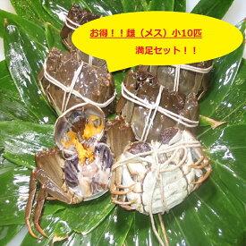 【本場中国産】上海蟹 メス 母 (小10匹満足セット)70前後 贈答 ギフトにオススメ 蟹 オーダー頂いてから急速冷凍