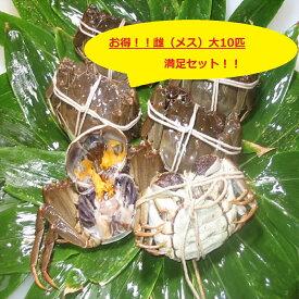 【本場中国産】上海蟹 メス 母 (大10匹満足セット!)110g前後 贈答 ギフトにオススメ 蟹 オーダー頂いてから急速冷凍