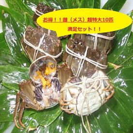 【本場中国産】上海蟹 メス 母( 超特大 10匹満足セット!)150g前後 贈答 ギフトにオススメ 蟹 オーダー頂いてから急速冷凍