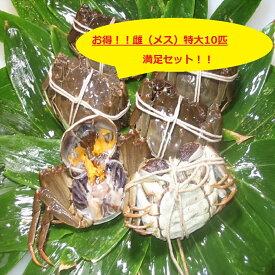 【本場中国産】上海蟹 メス 母 (特大10匹満足セット!)130g前後 贈答 ギフトにオススメ 蟹 オーダー頂いてから急速冷凍