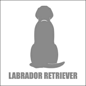 Rear view sticker Labrador Retriever 02P01Oct16