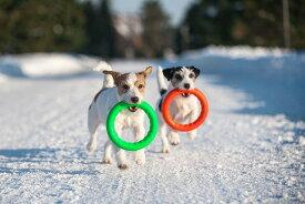 Pitch Dog20サイズ ピッチ ドッグ【小型犬 中型犬 頑丈 おもちゃ】【あす楽_土曜営業】リング型 ジャックラッセル トイ 水に浮く 水遊び 犬 ドッグ トレーニング プラー PULLER レトリーブ 楽天ランキング入り リング 輪っか ドーナツ オレンジ グリーン ブルー レッド