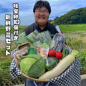 【送料無料】 新鮮野菜セット 10月限定 親鶏の炭火焼とたまごのおまけ付き