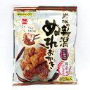 新潟 ぬれおかき (1袋160g) [ 米菓 お土産]