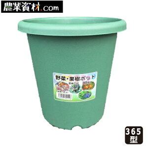 野菜・果樹ポット 365型 12号 グリーン 約22L(容量) φ365*365mm(高さ)コンテナ栽培 ポット栽培