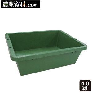 【企業限定】プラ箱 40 サイズ(緑)トロ舟 トロ箱 飼育 プラ舟 ビオトープ