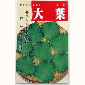 しそ 種 【大葉シソ】 小袋 ( 種 野菜 野菜種子 野菜種 )