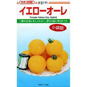 トマト 種 【 イエローオーレ 】 小袋 約20粒入り】[ミニトマトの種 販売]