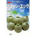 ズッキーニ 種 【 グリーンエッグ 】 種子 小袋(約10粒) ( 種 野菜 野菜種子 野菜種 )