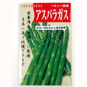 アスパラガス 種 【メリーワシントン500W】 小袋 ( 種 野菜 野菜種子 野菜種 )