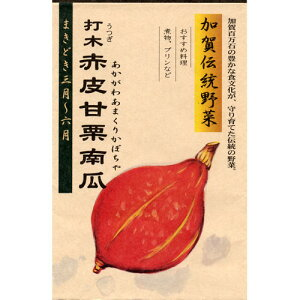かぼちゃ 種 【打木赤皮甘栗南瓜 ( あかがわあまくりかぼちゃ )】 12ml ( 種 野菜 野菜種子 野菜種 )