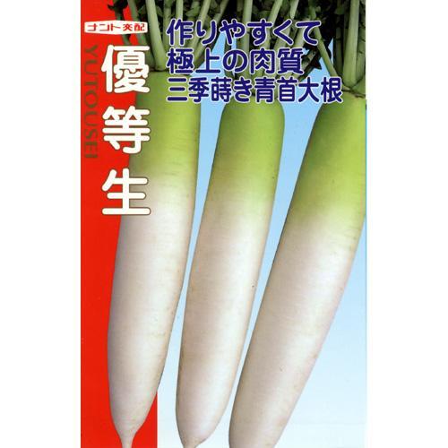 大根 種 【 優等生 】 種子 小袋(約4ml) ( 種 野菜 野菜種子 野菜種 )