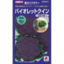 カリフラワー 種 【 バイオレットクイン 】 種子 20ml ( 種 野菜 野菜種子 野菜種 )