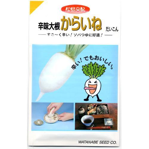 大根 種 【 からいね 】 種子 小袋(約7ml) ( 種 野菜 野菜種子 野菜種 )