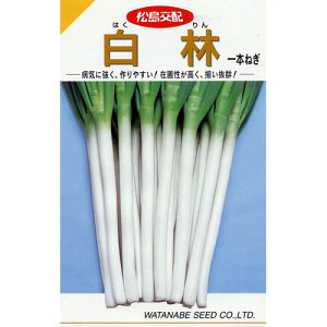 ネギ 種 【 白林 (はくりん) 】 種子 小袋(約20ml) ( 種 野菜 野菜種子 野菜種 )