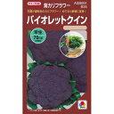 カリフラワー 種 【バイオレットクイン】 RF 0.7ml ( 種 野菜 野菜種子 野菜種 )