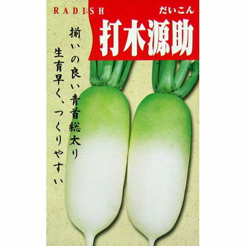 大根 種 【打木源助】 10ml ( 種 野菜 野菜種子 野菜種 )