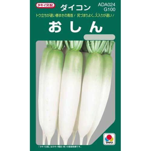 大根 種 【 おしん 】 種子 小袋(約20ml) ( 種 野菜 野菜種子 野菜種 )