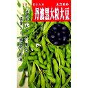 大豆 種 【 丹波黒大豆 】 種子 小袋 (約90粒)( 種 野菜 野菜種子 野菜種