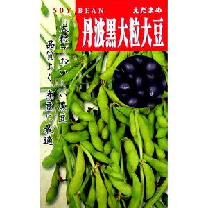 大豆 種 【 丹波黒大豆 】 種子 小袋 1dl( 種 野菜 野菜種子 野菜種