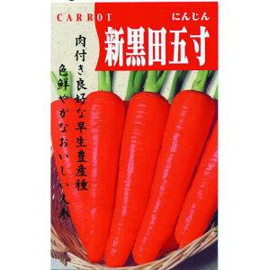 にんじん 種 【新黒田五寸】 1dl ( 種 野菜 野菜種子 野菜種 )