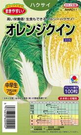 白菜 種 【オレンジクイン】 ペレット100粒 ( 種 野菜 野菜種子 野菜種 )