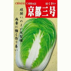 白菜 種 【京都三号】 8ml ( 種 野菜 野菜種子 野菜種 )