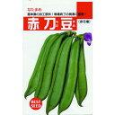 ナタマメ 種 【 赤刀豆 】 種子 小袋(約8粒) ( 種 野菜 野菜種子 野菜種 )