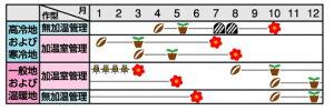 トルコギキョウ種【ロジーナピンクピコティー】ペレット3000粒(トルコギキョウの種)