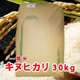 【 令和元年 新米 】三重県産 キヌヒカリ (きぬひかり) 玄米 一等米 30kg 【送料無料】【あす楽】