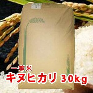 【 令和元年 新米 】三重県産 キヌヒカリ (きぬひかり) 玄米 一等米 30kg 【送料無料】
