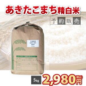 【 令和3年 】三重県産 あきたこまち 新米 精白米 5kg 【予約販売】