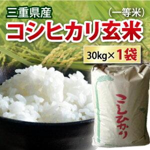 【送料無料】【 令和2年 】三重県産 コシヒカリ こしひかり 玄米 一等米 30kg コシヒカリ お米 コメ