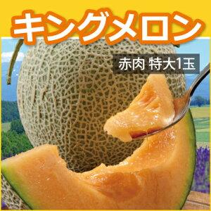 北海道キングメロン(特大1玉) 赤肉 2kg×1玉(優規格以上)