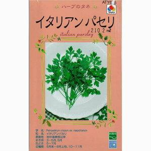 ハーブ 種 【イタリアンパセリ】 小袋 ( 種 野菜 野菜種子 野菜種 )