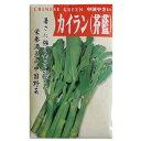 【カイラン】 10ml ( 種 野菜 野菜種子 野菜種 )