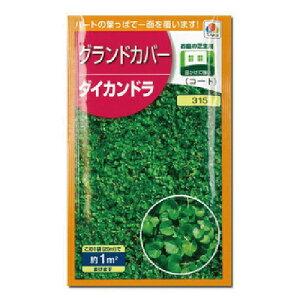 緑肥・牧草 種 【 ダイカンドラ 】 種子 小袋(20ml) ( 種 野菜 野菜種子 野菜種 )