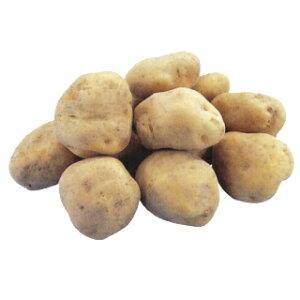 じゃがいも 種芋 【予約】【 高級男爵 1kg 入り】[馬鈴薯 ばれいしょ 種イモ 栽培 販売]