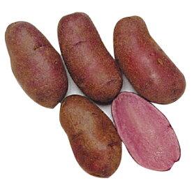 じゃがいも 種芋 【予約】 【 ノーザンルビー 1kg 入り】[馬鈴薯 ばれいしょ 種イモ 栽培 販売]