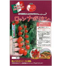 ミニトマト 種 【ロッソナポリタン】 8粒 ( 種 野菜 野菜種子 野菜種 )