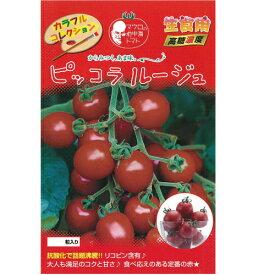 ミニトマト 種 【ピッコラルージュ】 8粒 ( 種 野菜 野菜種子 野菜種 )