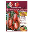 トマト 種 【サンマルツァーノリゼルバ】 100粒 ( 種 野菜 野菜種子 野菜種 )